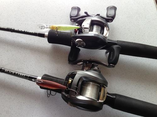 2013-3-2 rod.JPG