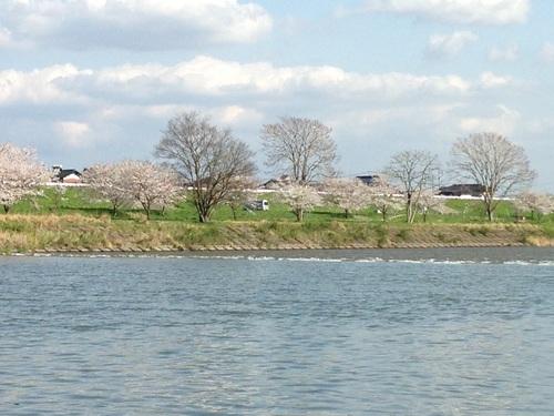 20130404-KN風景.JPG
